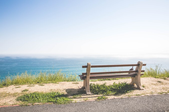 The bench | The Photo Forest