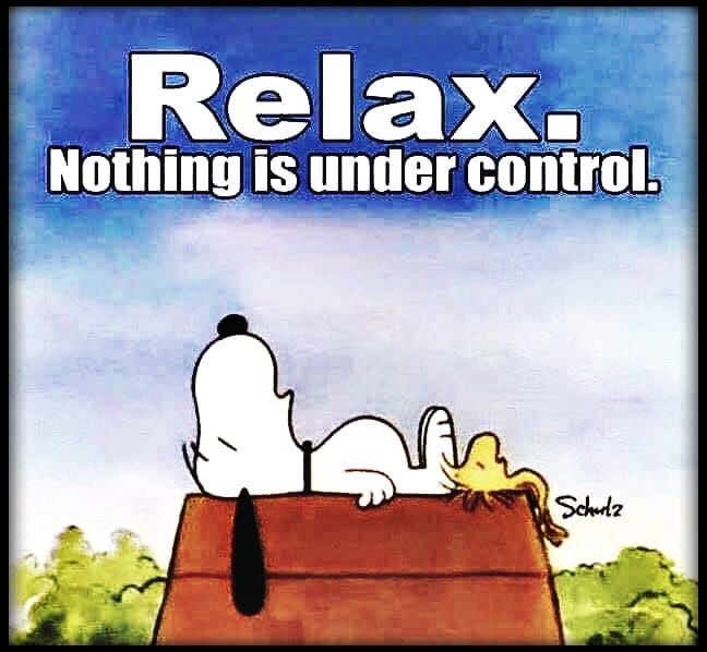 365685-Relax.-Nothing-Is-Under-Control